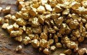 busco inversionista, para oro