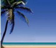 Franquicia de agencia de viajes online