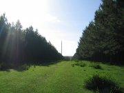 445 hectáreas con hermosa casa Uruguay