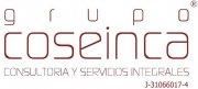 Grupo Coseinca