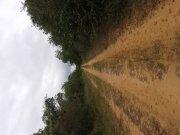 Busco Socio Inversión Agropecuaria Ganadera