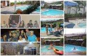 piscina_collage_1487428066.jpg