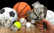 Negocio serio, rentable y poco capital