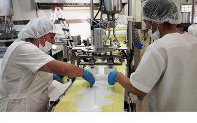 Fabrica De Empanadas Venta De Empresas De Fabricacion Y Venta De Empanadas Medellín Antioquia