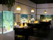 restaurante-acuario italiano